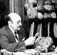 Dr Javier Cabrera